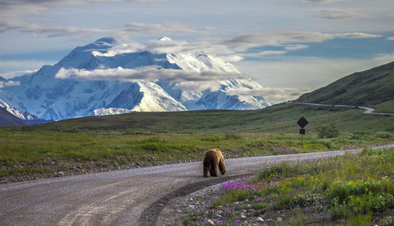 10 raisons d'ajouter l'Alaska à votre liste de voyage