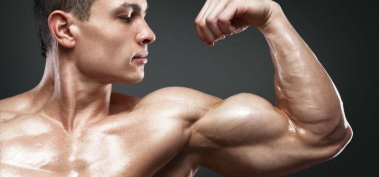 La mémoire musculaire est réelle et voici comment cela vous aide à développer vos muscles rapidement